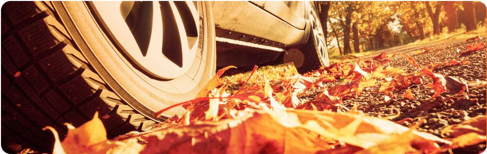 Veilig autorijden in de herfst band